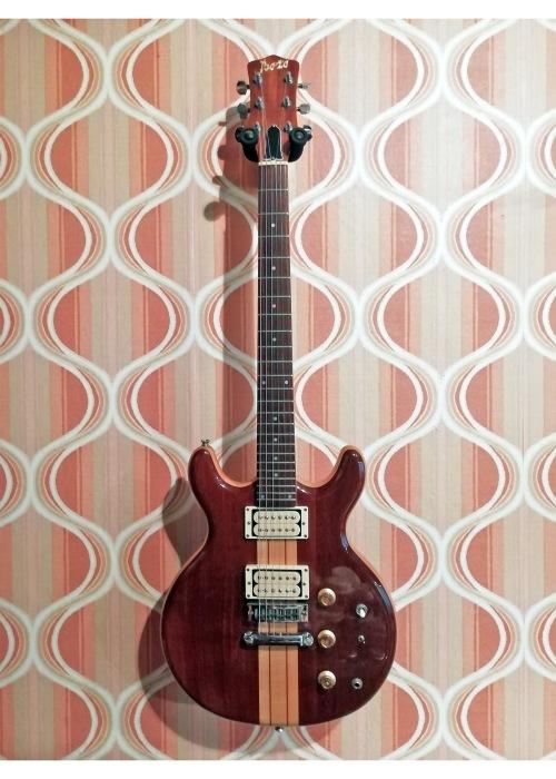 Bozo Gitarre Ganz